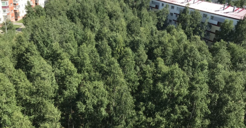 2-комн. квартиры г. Сургут, Островского 14 (мкрн 14) фото 8