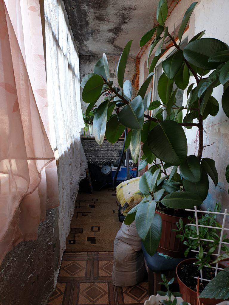 2-комн. квартиры г. Сургут, Набережный, проспект 4б (р-н Центральный) фото 6