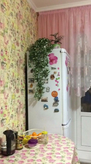 1-комн. квартиры г. Сургут, Быстринская 18 (р-н Северо-восточный жилой) фото 8
