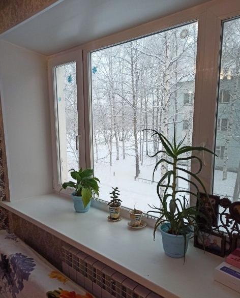 1-комн. квартиры г. Сургут, Береговая 72 (р-н Центральный) фото 1
