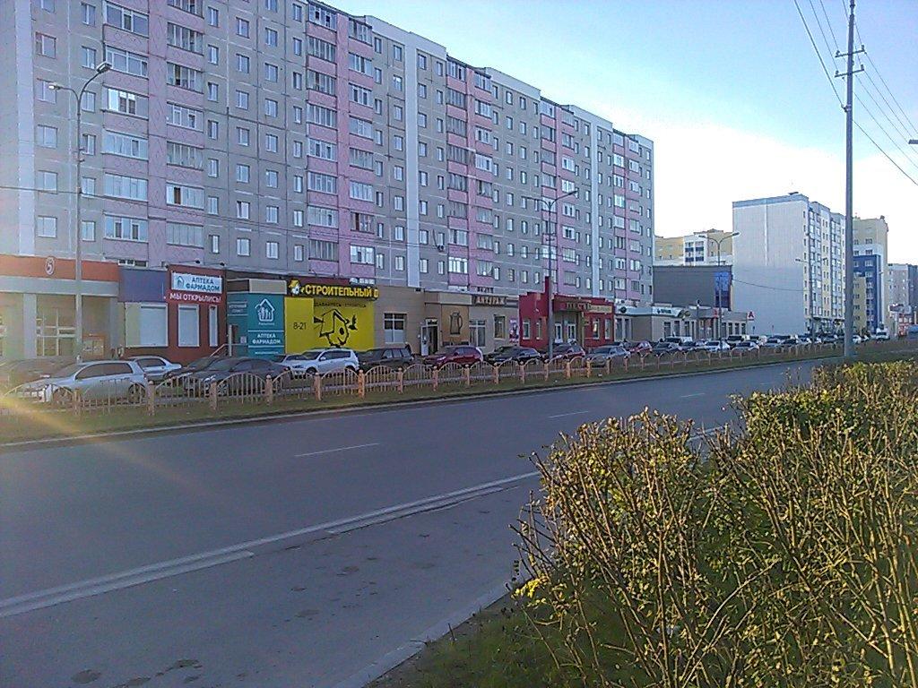 1-комн. квартиры г. Сургут, Иосифа Каролинского 13 (р-н Северо-восточный жилой) фото 2