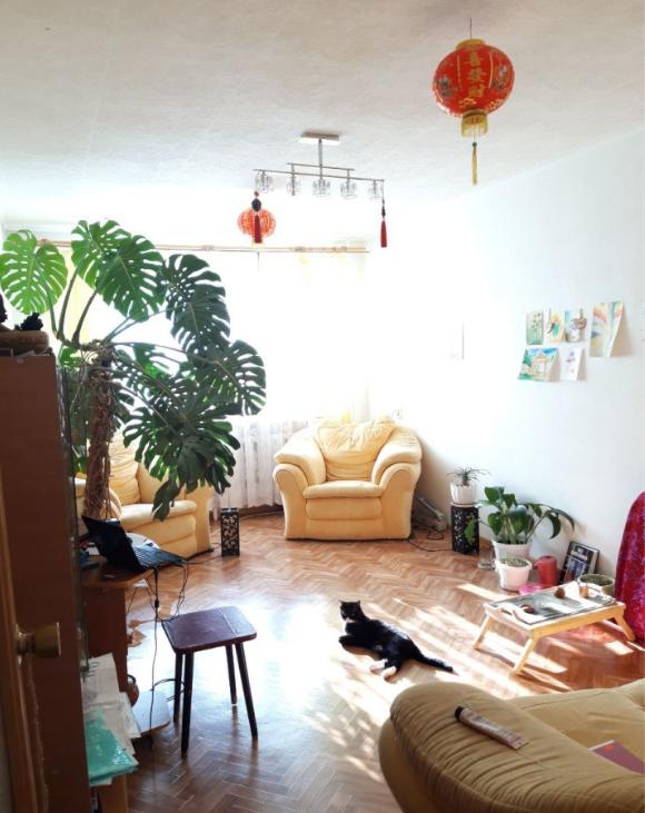 2-комн. квартиры г. Сургут, Энергетиков 41 (р-н Центральный) фото 2