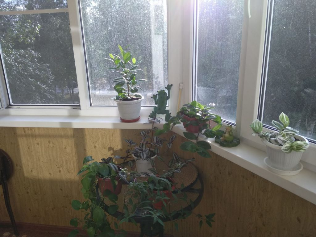 2-комн. квартиры г. Сургут, Мелик-Карамова 25 (р-н Восточный) фото 12