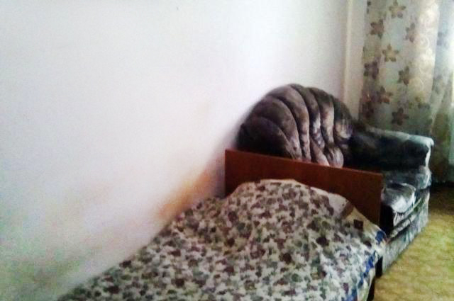 1-комн. квартиры г. Сургут, Крылова 47/2 (р-н Северный жилой) фото 3